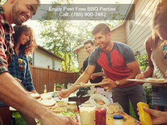 Pest Free BBQ Party